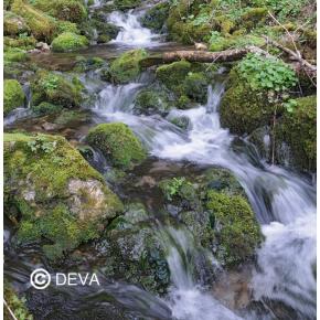 Eau de roche - Rock water